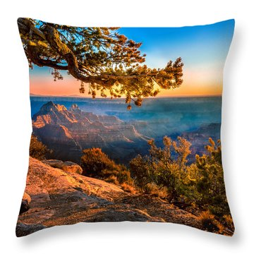 North Branch Throw Pillow