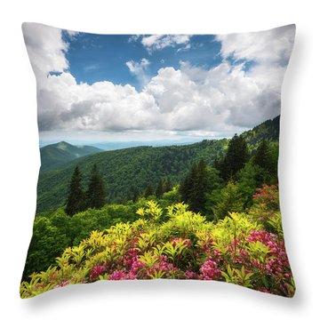 North Carolina Appalachian Mountains Spring Flowers Scenic Landscape Throw Pillow