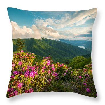 North Carolina Blue Ridge Parkway Spring Mountains Scenic Landscape Throw Pillow