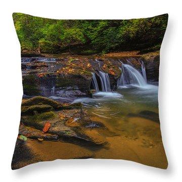 North Carolina Cascade Throw Pillow