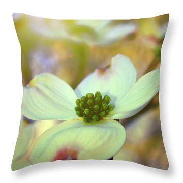 North Carolina Dogwood State Flower Throw Pillow by Gray  Artus