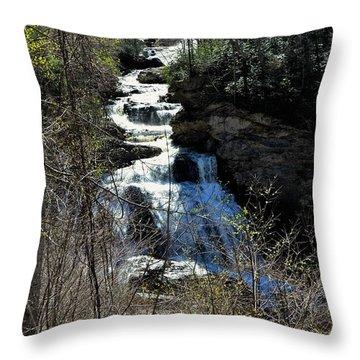 North Carolina Falls Throw Pillow
