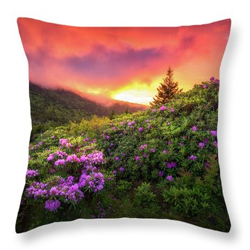 North Carolina Mountains Outdoors Landscape Appalachian Trail Spring Flowers Sunset Throw Pillow