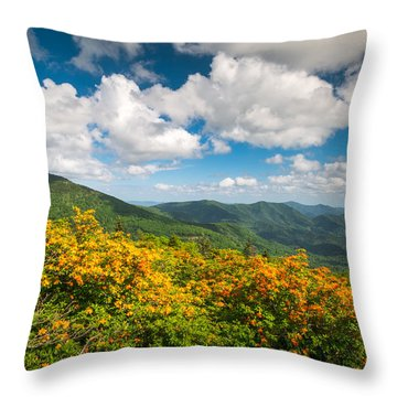 North Carolina Roan Mountain Flame Azalea Flowers Appalachian Trail Throw Pillow