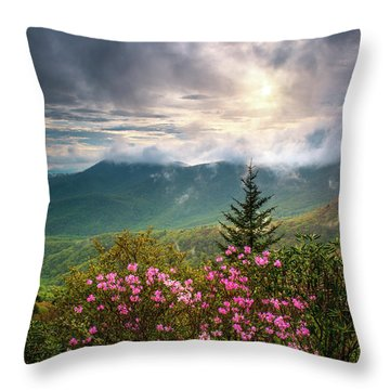North Carolina Spring Flowers Blue Ridge Parkway Scenic Landscape Asheville Nc Throw Pillow