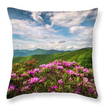 North Carolina Spring Flowers Mountain Landscape Blue Ridge Parkway Asheville Nc Throw Pillow