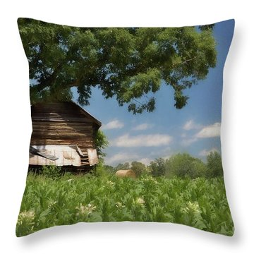 Throw Pillow featuring the photograph North Carolina Tobacco by Benanne Stiens