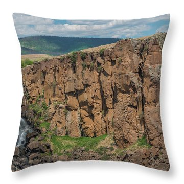 North Clear Creek Falls, Creede, Colorado 2 Throw Pillow
