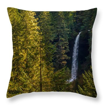 North Falls View Throw Pillow