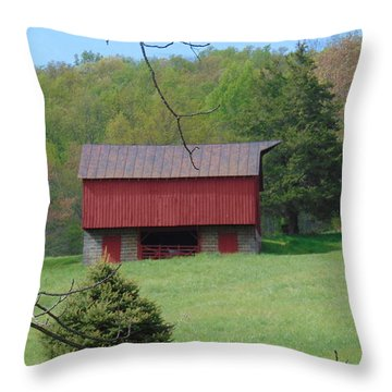 North Garden Barn Throw Pillow by Charlotte Gray