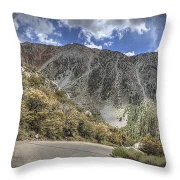North Lake Road Throw Pillow