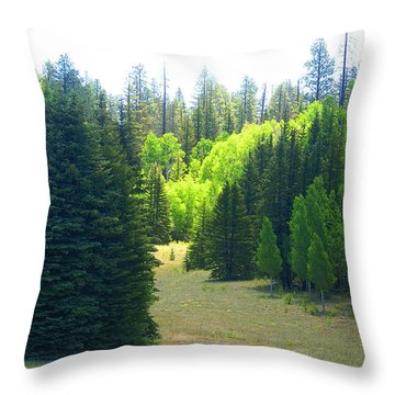 North Rim Landscapes Throw Pillow