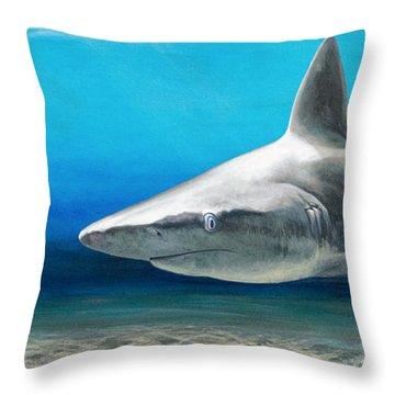 North Shore Sandbar Throw Pillow
