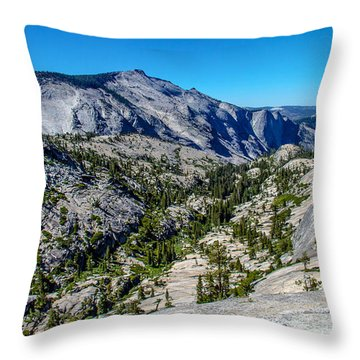North Side Of Half Dome Valley Throw Pillow by Brian Williamson