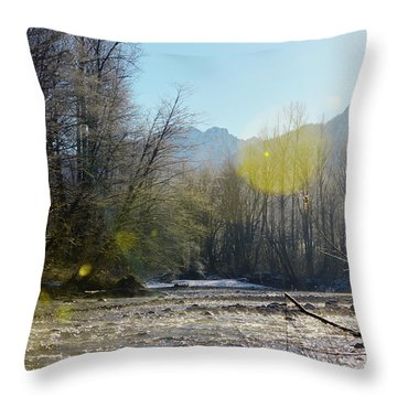 North Stilly Throw Pillow