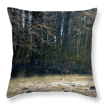 North Stilly Too Throw Pillow