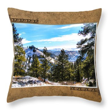 Throw Pillow featuring the photograph North View by Susan Kinney