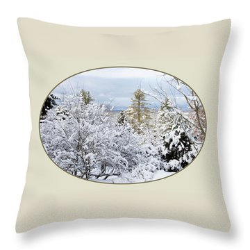 northeast USA photography button Throw Pillow