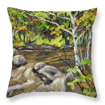 Northerm Stream Woodland Created By Richard T Pranke Throw Pillow