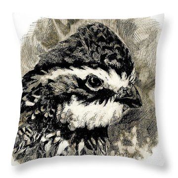Northern Bobwhite Throw Pillow