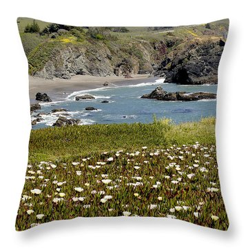 Northern California Coast Scene Throw Pillow