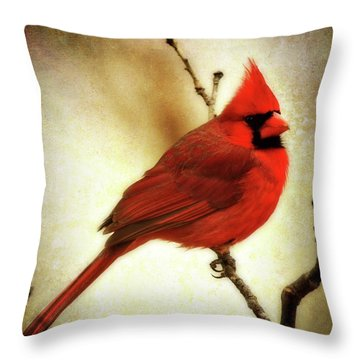 Northern Cardinal Throw Pillow by Lana Trussell