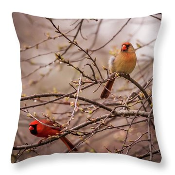 Throw Pillow featuring the photograph Northern Cardinal Pair In Spring by Terry DeLuco