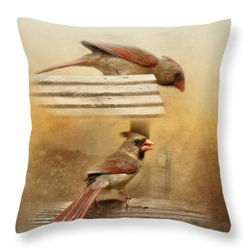 Northern Cardinals At Sunrise Throw Pillow