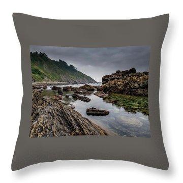 Northern Coast Throw Pillow