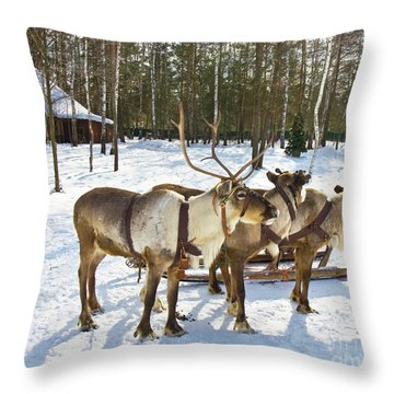 Northern Deers Throw Pillow