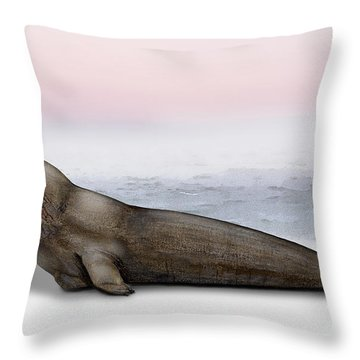 Throw Pillow featuring the painting Northern Elephant Seal Mirounga Angustirostris Male - Marine Mammal - Seeelefant by Urft Valley Art