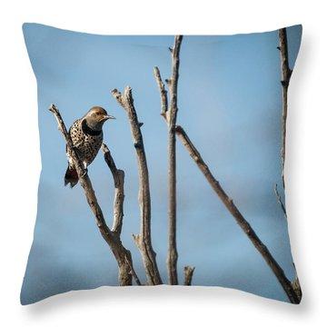 Northern Flicker Woodpecker Throw Pillow