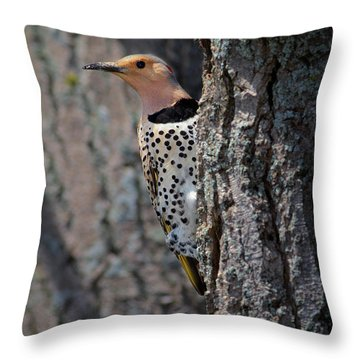 Northern Flickr Throw Pillow