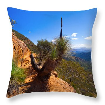 Northern Flinders Ranges And The Abc Range Throw Pillow by Bill  Robinson
