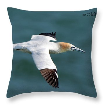 Northern Gannet Throw Pillow