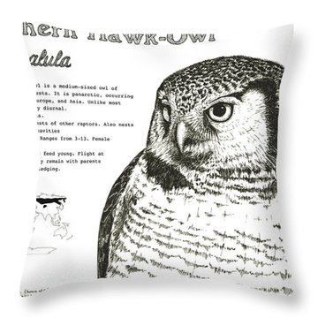 Northern Hawk-owl Infographic Poster Throw Pillow