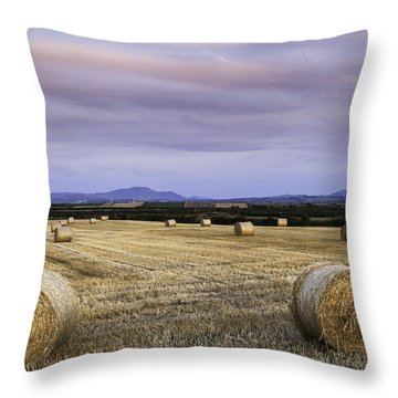 Northern Lakeland View Throw Pillow
