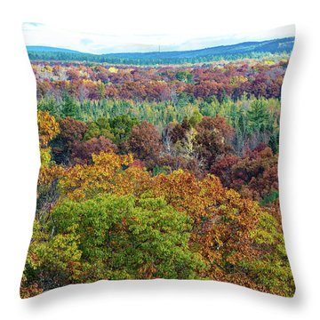 Northern Michigan Fall Throw Pillow