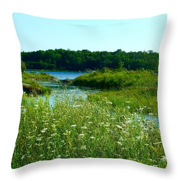 Northern Ontario 1 Throw Pillow by Claire Bull