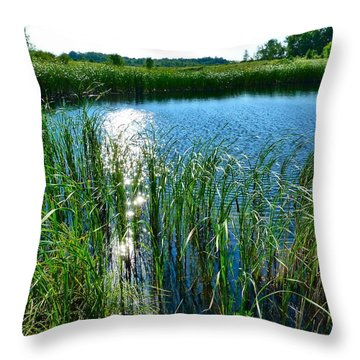Northern Ontario 2 Throw Pillow by Claire Bull