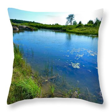 Northern Ontario 3 Throw Pillow by Claire Bull