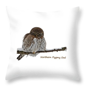 Northern Pygmy Owl 2 Throw Pillow