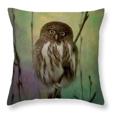 Northern Pygmy Owl  Throw Pillow