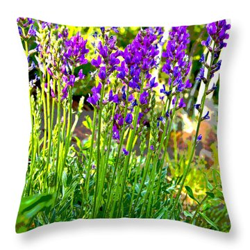 Throw Pillow featuring the photograph Northern Wildflowers by Tom Kelly