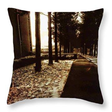 Northwest Passage Throw Pillow