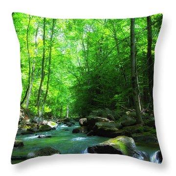 Northwood Brook Throw Pillow