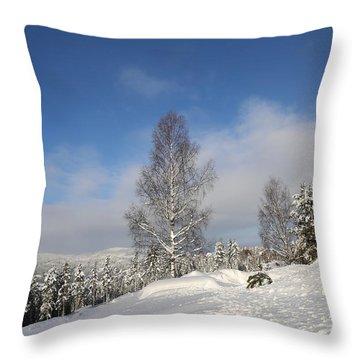 Norwegian Valley. Throw Pillow