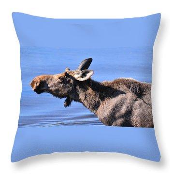 Nose First - Moose Throw Pillow