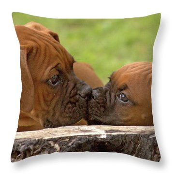 Nose To Nose Throw Pillow