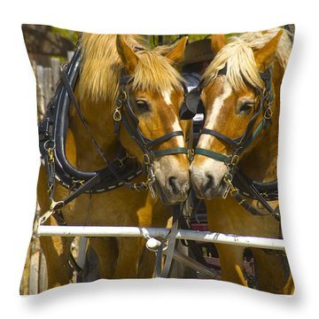 Nose To Nose Throw Pillow by R Thomas Berner